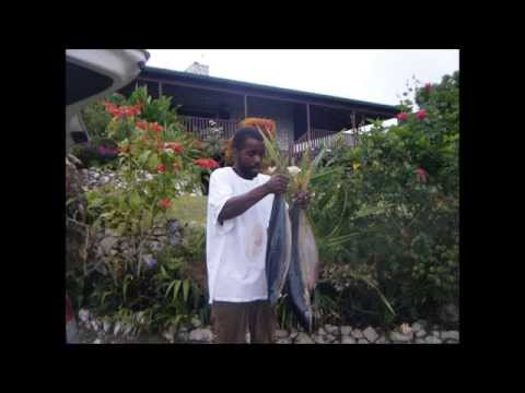 Jamaica Fishing Trip #1