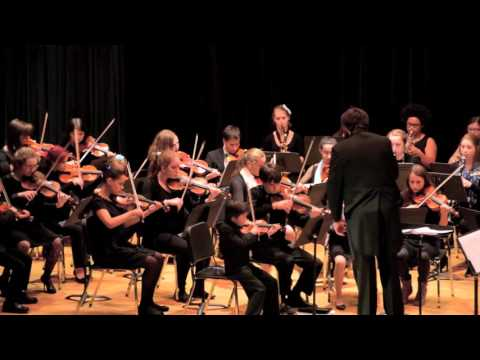 Cape Youth Orchestra Performs Beethoven's Symphony 5 in c minor, op. 67, Mvt. 4