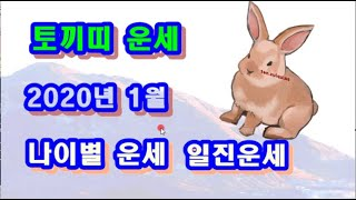 1월 토끼띠 운세 - 2020년 1월 기해년 정축월 토끼띠 일진 사주 운세보기