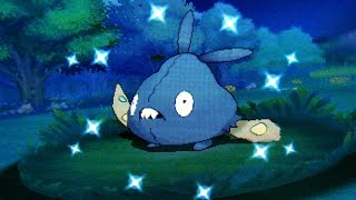 DEXNAV: Shiny Trubbish after 264 Encounters on Route 110! (Pokemon Alpha Sapphire)