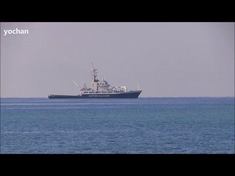 Salvage Tugboat: KOYO MARU (Owner: The Nippon Salvage Co., Ltd. Flag: JAPAN, IMO: 9162148)