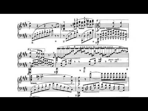 Liszt - Sonetto 104 del Petrarca, S.161, No.5 - Elisso Wirssaladze