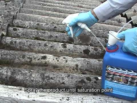 AntiMoussesGuard - удаление мха, грибка, водорослей и лишайников.