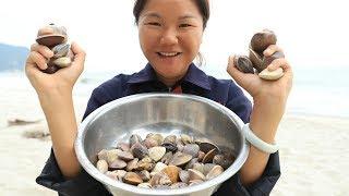 趕海撿回來的沙白,小漁裹上錫紙直接拿來烤,吃上一口忘不了【漁小仙】