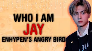 [ WHO I AM ] ♔ ENHYPEN JAY - ENGENE'S FAVORITE ANGRY BIRD | USE HEADPHONE FOR BEST EXPERIENCE