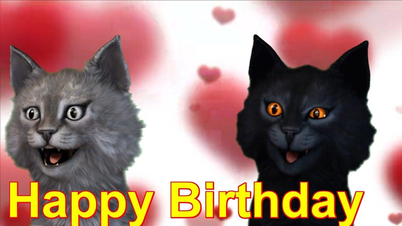 Hund Und Katze Die Geburtstag Feiern Stockbild Bild Von Kerze