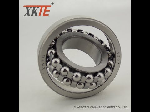 Self aligning ball bearing for Conveyor Drum Pulley