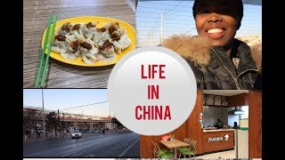 Delicious Dumplings in China 中国最美味的饺子 || LIFE AS A STUDENT IN CHINA, MINI CHINESE SCHOOL TOUR