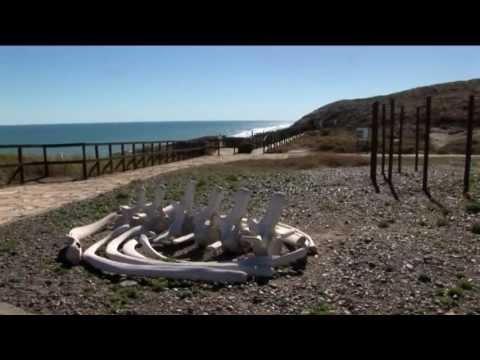 La Magdalena: l'altra Patagonia