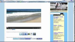 Как вставить видео на блог  WordPress