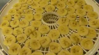 Dehydrating Bananas with a Presto Dehydrator  --  Our First Time -- Great !!