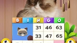 Grumpy Cat Bingo is a Halloween Treat