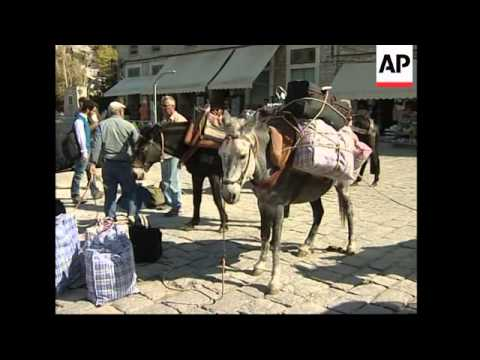 Donkey numbers are dwindling in Greece