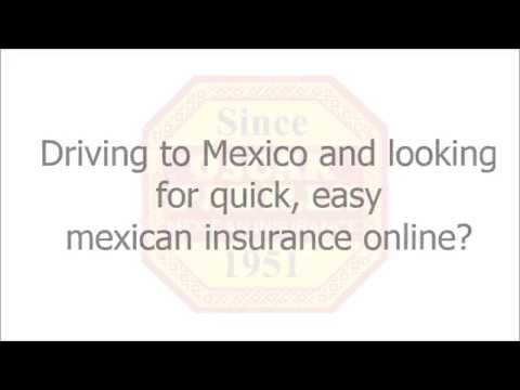 Mexican Insurance website