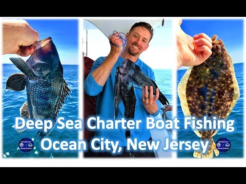 Deep Sea Charter Boat Fishing, Ocean City, NJ, 24 Aug 2018
