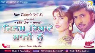 Film Vikhade Sali Nu (Jukebox)    Karnail Heera    Karamdeep    Rick E Productions