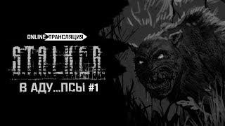 S.T.A.L.K.E.R.: В АДУ...ПСЫ 👿 Stream #1