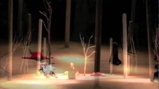 Black Stork-La cigogne noire-Schwarzer Storch-Xara Kytalyk