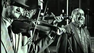 taraf de haidouks ensemble der lautari aus clejani rumanien 1998