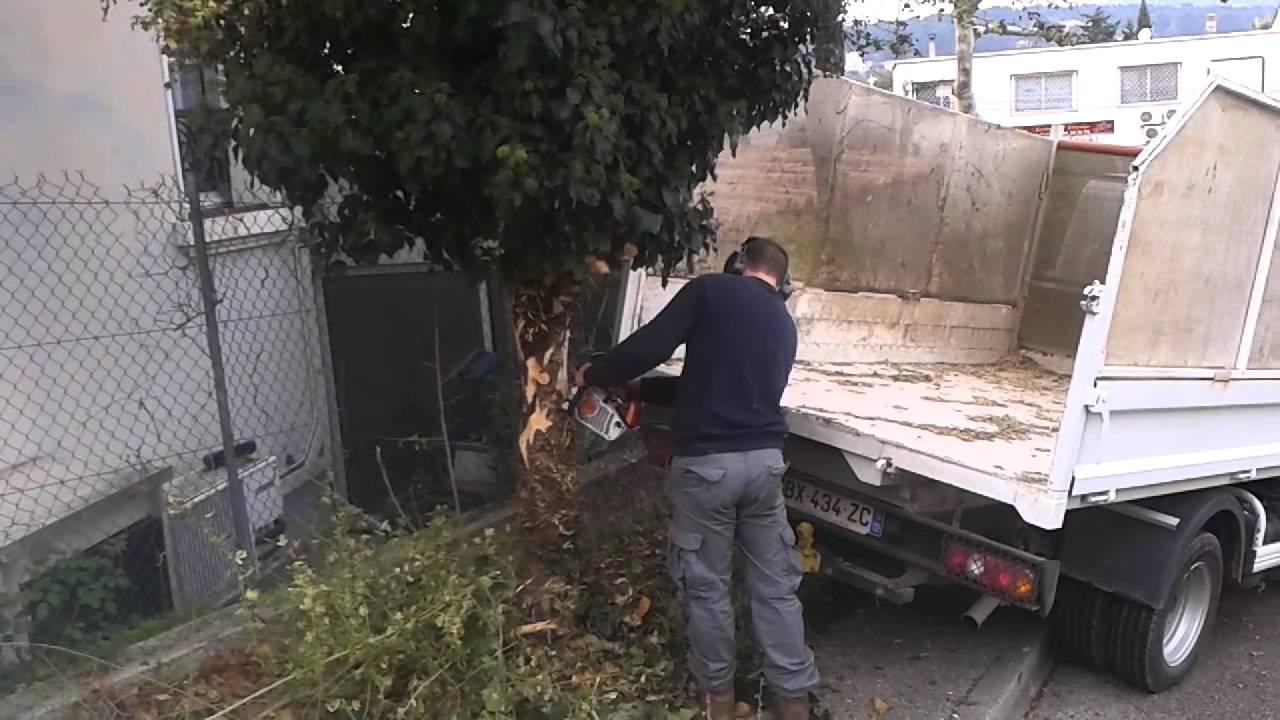 abattage d 39 arbre avec une lagueuse stihl ms192 youtube. Black Bedroom Furniture Sets. Home Design Ideas