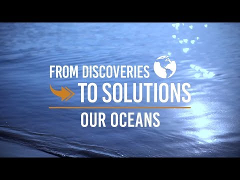 Duke Environment: From Discoveries to Solutions-Our Oceans