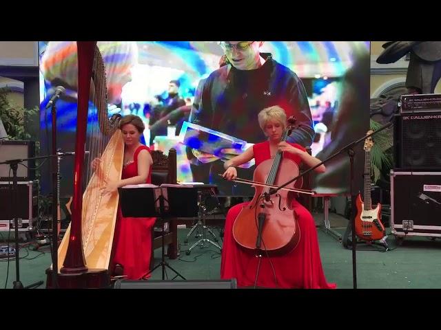 Арфа и виолончель1