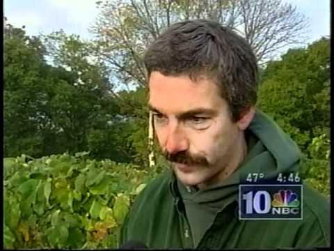 NBC10s Kristen Welker interviews Steve Linvill about the frost in Pumpkinland
