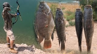 Bowfishing Tilapia And Carp In Clear Water Using A Infinite Edge Bow And AMS Kit