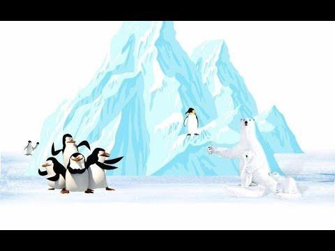 為什麼北極沒有企鵝,南極沒有北極熊?