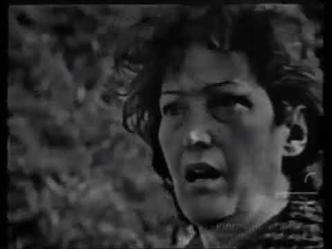 MULHERES DE AREIA 1973 apresentação elenco