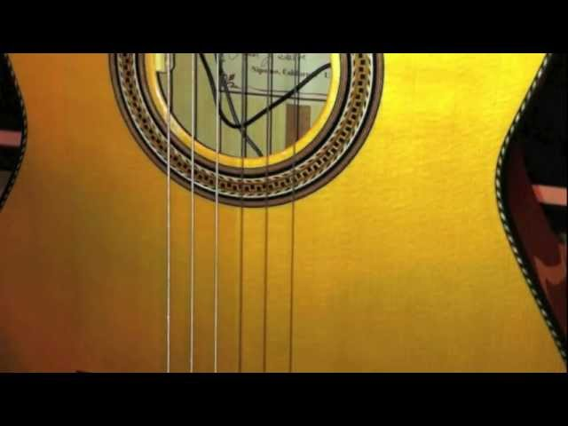LR Baggs Anthem SL Classical TruMic /& Element Pickup System Nylon String Guitars