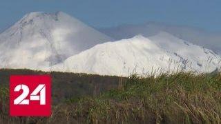 Вулканы, горячие источники и Тихий океан: на Камчатке набирает обороты экотуризм - Россия 24