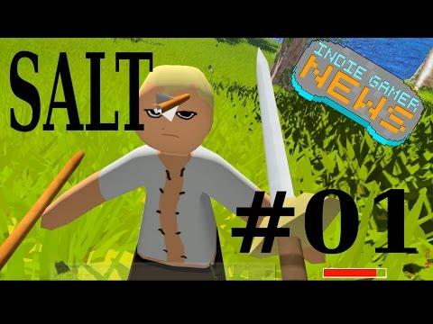 Salt - Day #01 - Indie Gamer News