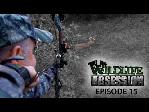 Wildlife Obsession Ep. 15 (Glen Simpson | Jeff Lindsey | Lance Chapman)