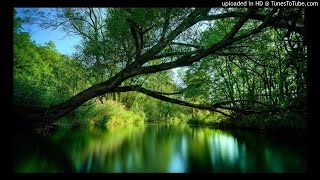 Vanam Vazhthida-S.P.B,Minmini tamil melody songs