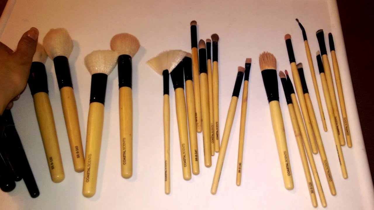 coastal scents brushes. coastal scents bamboo brushes 2 years later!! a