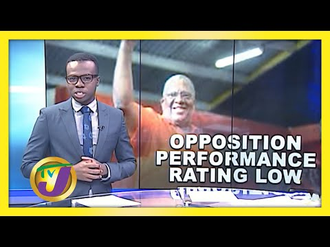 Poll: Opposition Performance Rating Low - August 17 2020