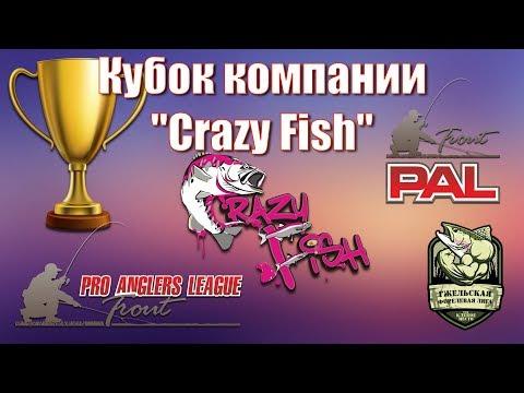 """Кубок """"Crazy Fish"""" по ловле форели, 1-й отборочный этап на осенний турнир PAL Trout."""