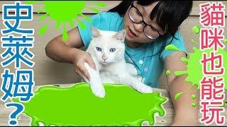APP 貓咪也能玩史萊姆 用平板做雪卷花卷史萊姆 NyoNyoTV妞妞TV玩具