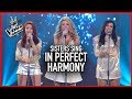 PERFECT HARMONY VOICES Give Coaches CHILLS WINNER S JOURNEY 3 mp3
