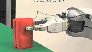Using Robotic Exploratory Procedures to Learn the Meaning of Haptic Adjectives