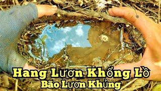 Câu lươn sông_Bão lươn khủng_Trúng mánh 1.3KG lươn khủng_tập354//River eel fishing. 1.3KG giant eel