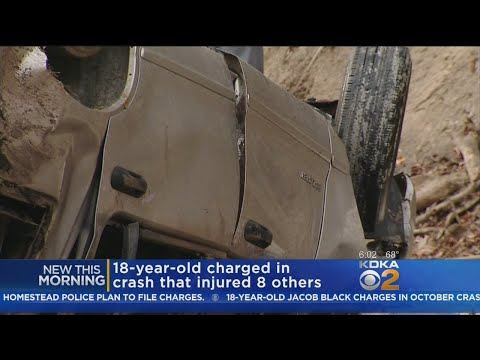 Driver In Lower Burrell Crash That Injured 9 Facing Felony Charges