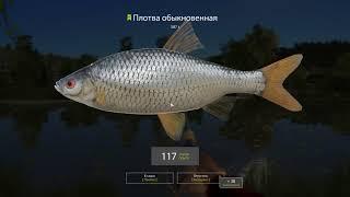 Русская рыбалка 4 - река Сура - Карась и плотва на озере