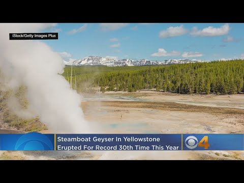 Tall Yellowstone Geyser Sets Record With Recent Activity