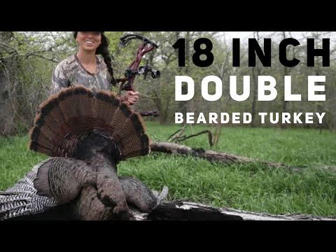 Sarah Shoots 18 Inch Double Bearded Turkey With A Bow!😳 Bowmar Bowhunting