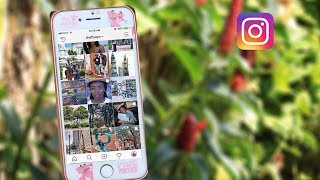 How I use 5 AMAZING APPS to have the PERFECT INSTA...