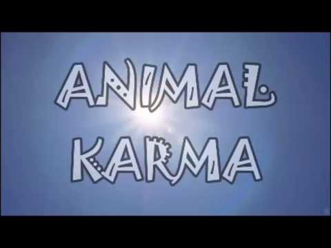 A PLANET FULL OF LIES, YET FULL OF LIFE - Alex Leventeris (ANIMAL KARMA/2017)