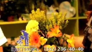 Сеть цветочных салонов