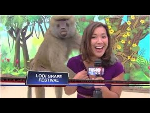 Pakistani funny female news reporter blooper strong language 18